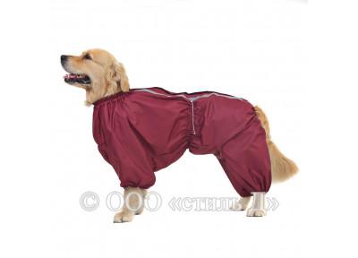 Комбинезон п103 для собак породы ши-тцу