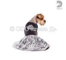 Платье л61 (велюр,кружевное полотно,пайетки )